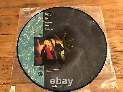 Very Rare Picture Vinyl Nirvana Nevermind Limited Edition